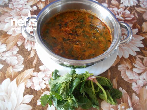 Teremyağlı Ispanaklı Isırganotlu Pirinçli Çorba