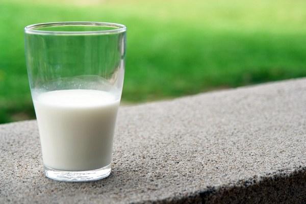 süt zerdeçal