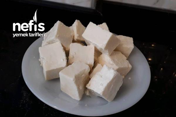 Evde Doğal Peynir Yapımı Tarifi