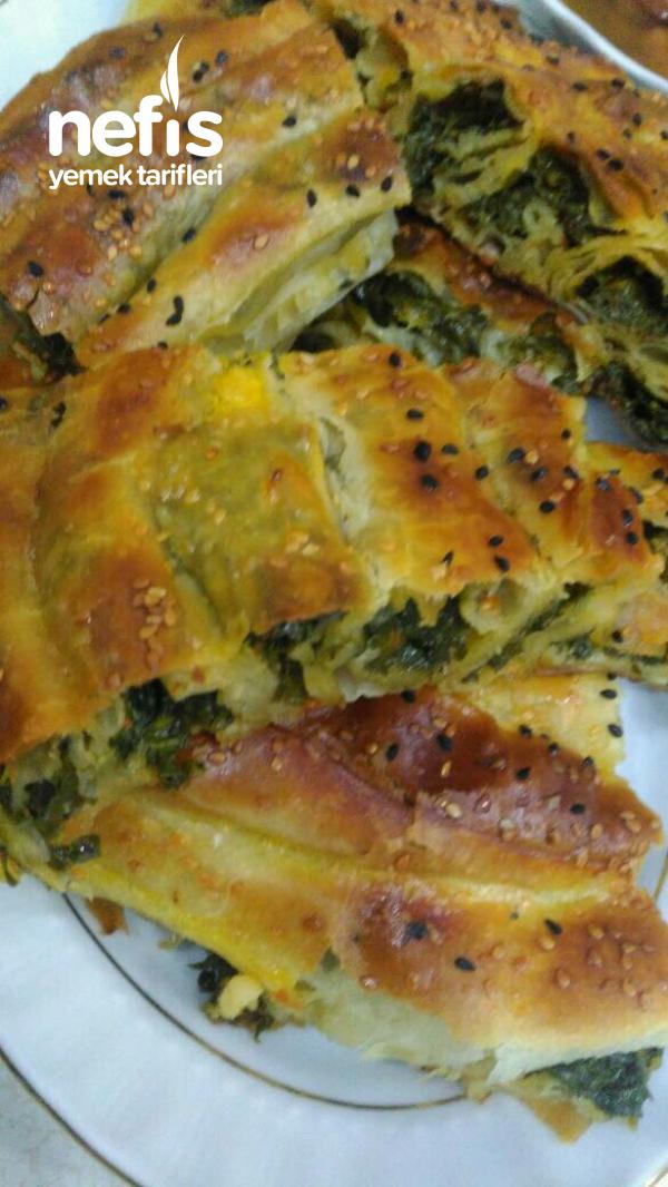 Teremyağlı Ispanaklı Peynirli Kol Böreği
