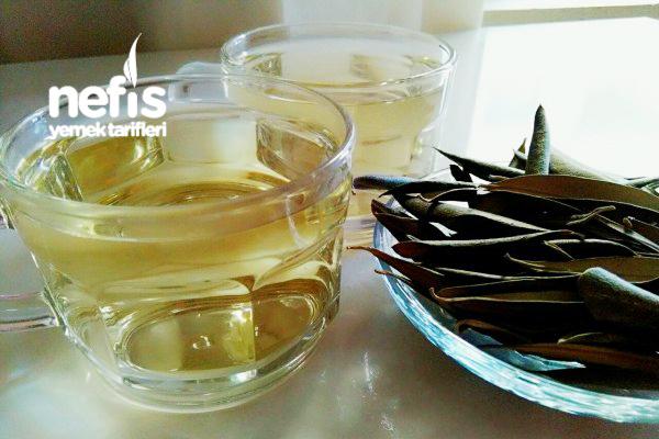 Zeytin Yaprağı Çayının Hiç Bilmediğiniz 7 Gizli Faydası Tarifi