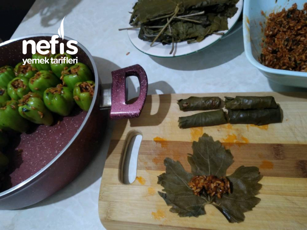Zeytin Yağlı Dolma Biber Ve Yaprak Sarması.