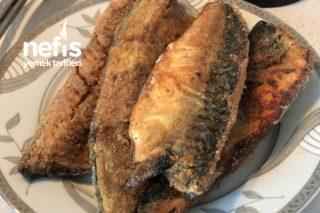 Balık Kızartması Tarifi