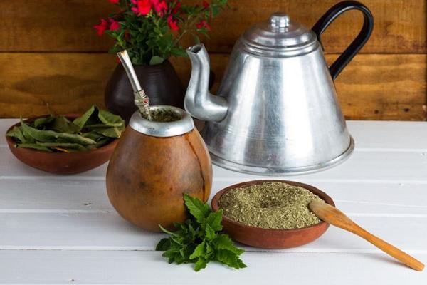 mate çayı faydaları