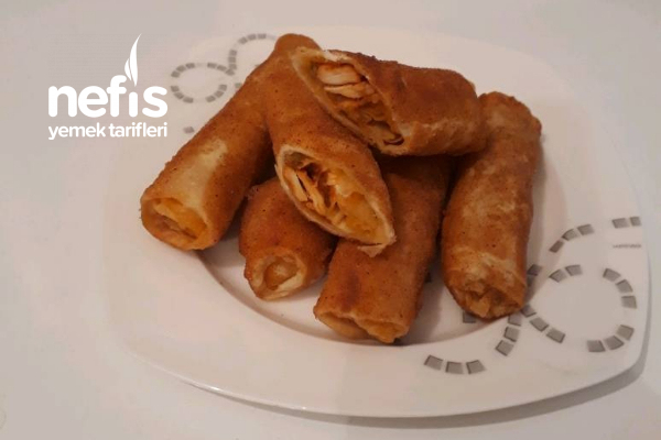 Nefis Tavuklu Paçanga Böreği Tarifi