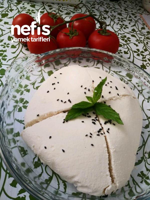 Peynir Yapımı (Böreklik Lor Peyniri)