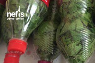 Şişede Kışlık Asma Yaprağı Hazırlama Tarifi