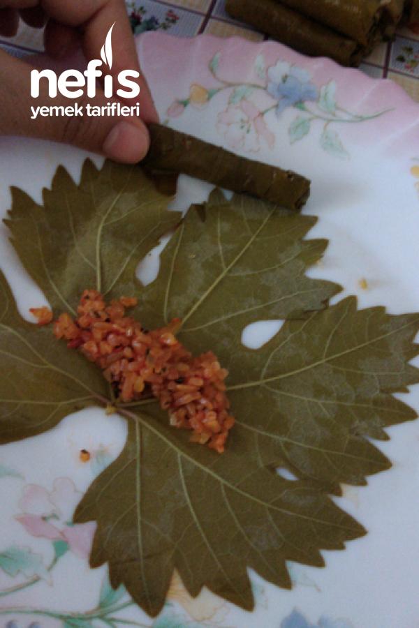 Bulgurlu Taze Yaprak Sarma