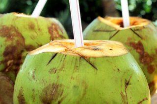 Besleyici Hindistan Cevizi Suyunun 7 Faydası Tarifi