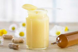 Destek Besin Arı Sütünün 7 İnanılmaz Faydası Tarifi