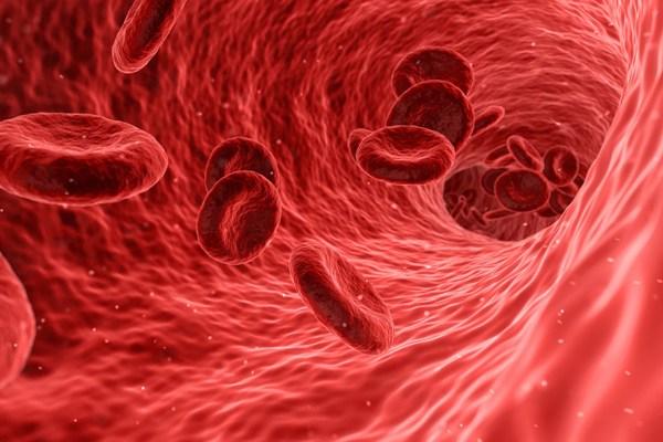kan akışı