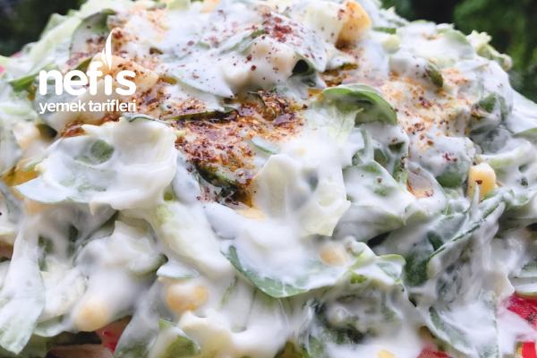 Yeşili Bol Yoğurtlu Semizotu Salatası Tarifi
