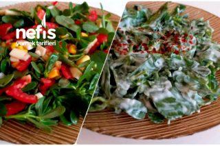 Semizotlu İki Farklı Salata (Videolu) Tarifi