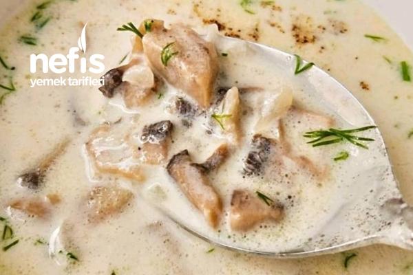 Mantar Çorbası (Krema Veya Süt Tercihli) Tarifi