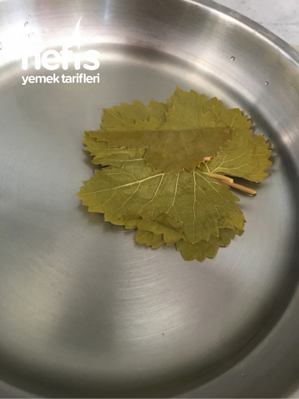 Zeytin Yağlı Yaprak Sarması
