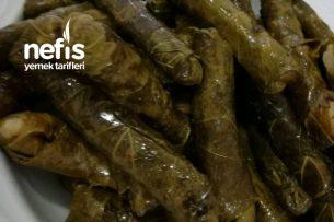 Soğuk Lezzetler 5 Zeytinyağlı Yaprak Sarma Tarifi