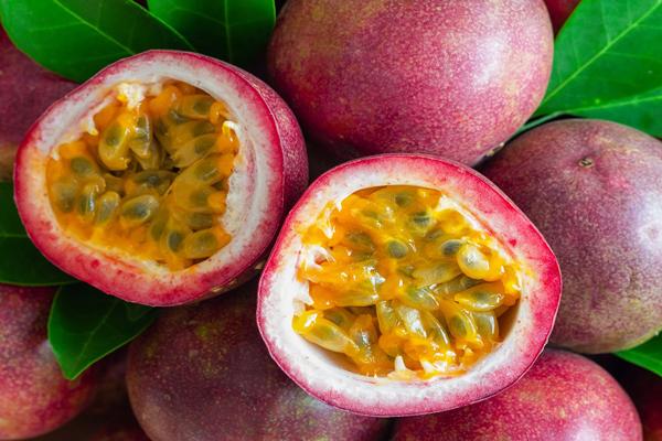 çarkıfelek meyvesi nasıl yetiştirilir