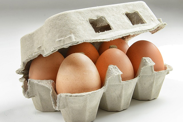 yumurta kabuğu gübre