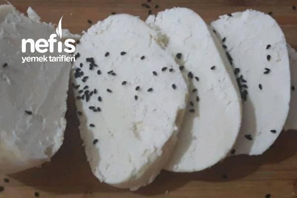 Kesik Sütten Peynir Yapımı