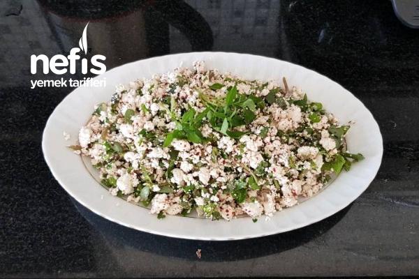 Kahvatılık Semizotlu Lor Peynirli Salata Tarifi