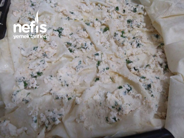 Su Böreği Tadında Sodalı Peynirli Tepsi Böreği