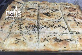 Ispanaklı Pırasalı Börek Tarifi