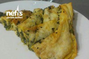 Sarmal Ispanak Böreği Tarifi