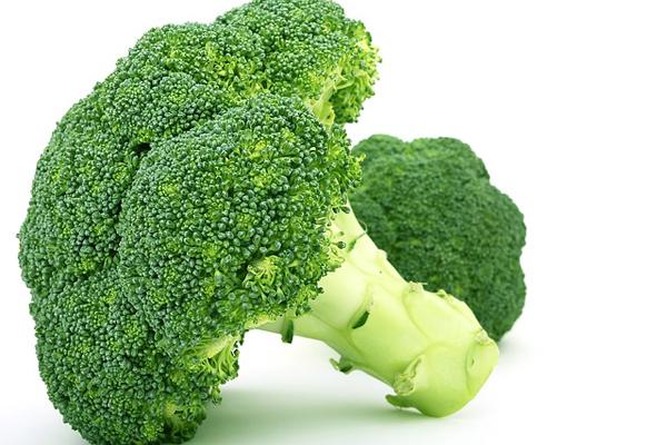 brokoli kürü kaç gün içmeli