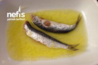 Tuzlu Balık (Sardalya) Tarifi