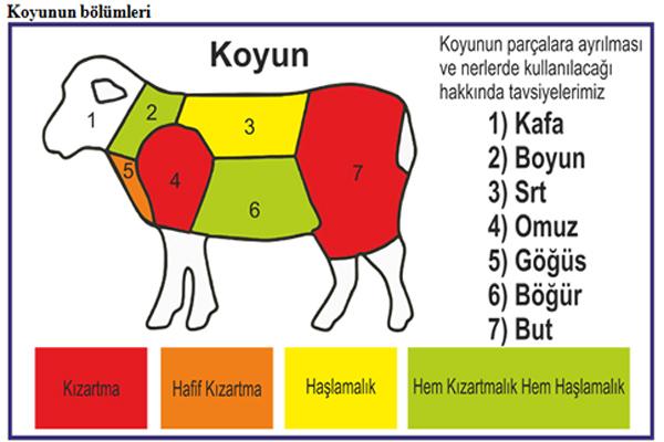 koyun etinin bölümleri
