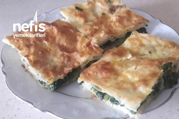 Kuru Yufkadan Ispanaklı Börek Tarifi