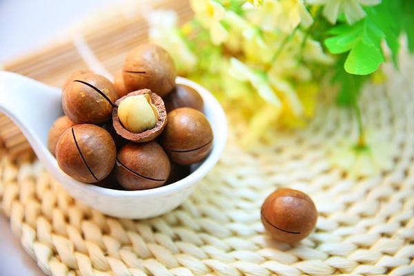 macadamia yağı faydaları