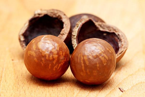 macadamia yağı saç
