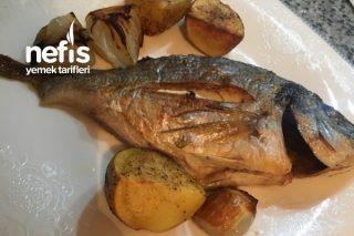 Fırında Çupra Balık (Çipura) Tarifi