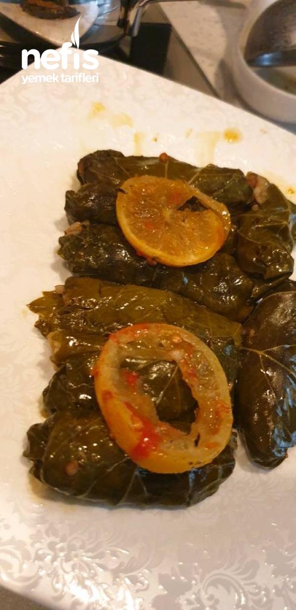 Yaprak ve lahana Sarma domates soslu