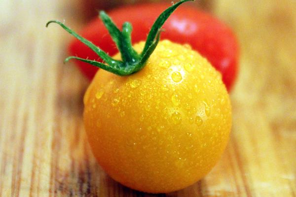 sarı domates tohumu