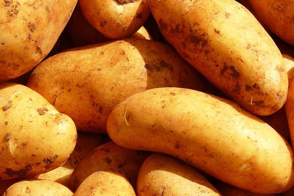durabo patates