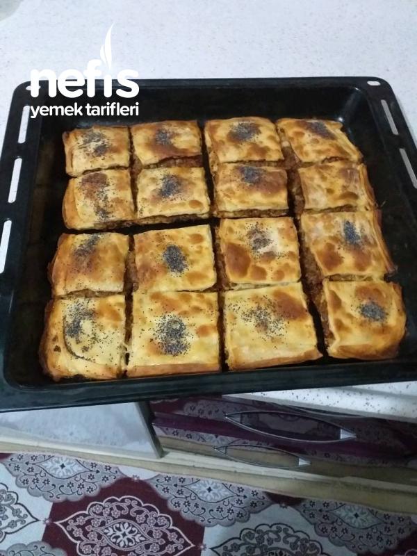 Kıymalı Tespi Böreği (El Acmasi)