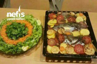 Fırında Sebzeli Palamut Balık Tarifi