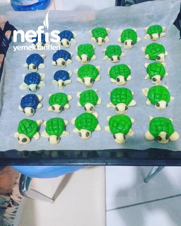 Kaplumbağa Kurabıyeler