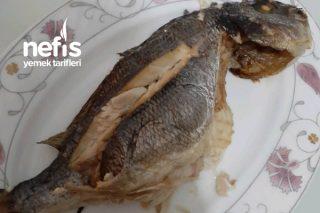 Fırında Çupra balığı Tarifi