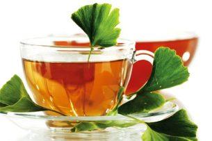 ginkgo biloba çayı