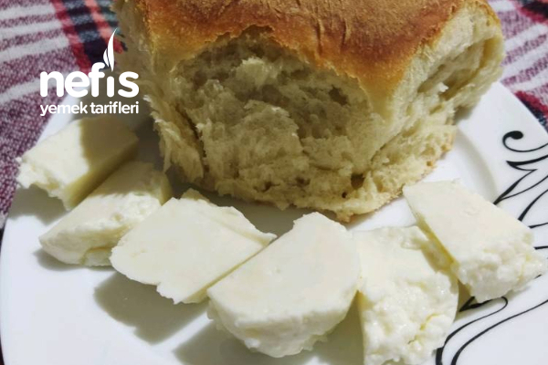 Peynir Yapımı Tarifi