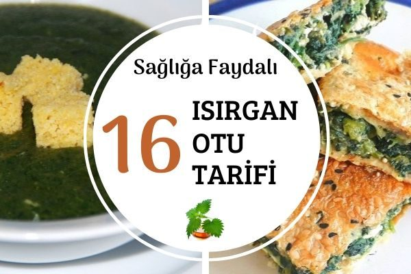 Isırgan Otu ile Çok Faydalı 16 Tarif Tarifi