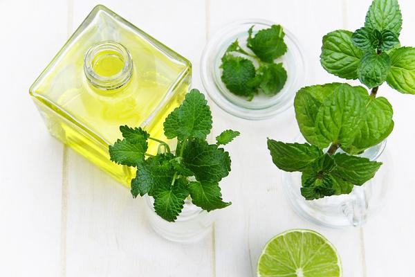 limon otu yağı
