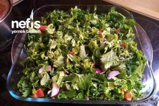 Isırgan Salatası Tarifi