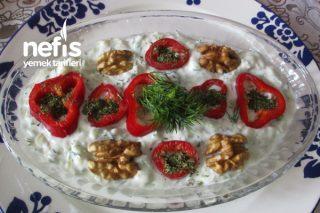 Krem Peynirli Dereotlu Sakız Kabağı Tarator Tarifi