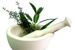 Varikosel Bitkisel Tedavisi En Doğal 3 Yöntem Tarifi
