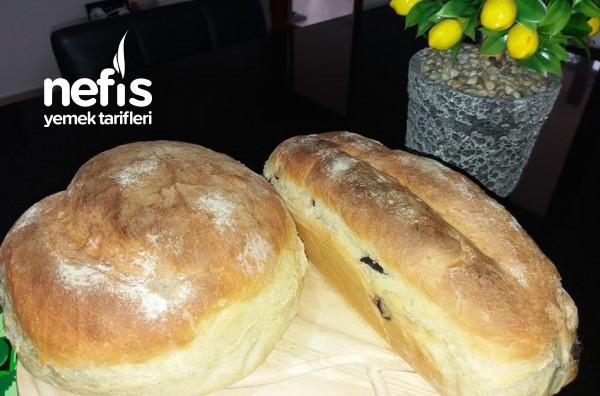 Aynı Hamurdan Sade Ve Zeytinli Ekmek