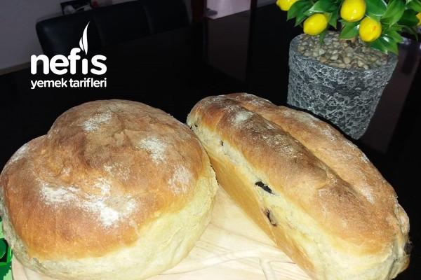 Aynı Hamurdan Sade Ve Zeytinli Ekmek Tarifi